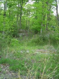 Home for sale: Lot 26 Parkstown Rd., Wilder, TN 38589