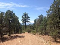 Home for sale: * Dutchs Rd., Valdez, NM 87580