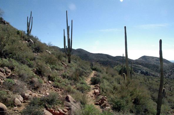 43224 N. 79th St., Cave Creek, AZ 85331 Photo 29