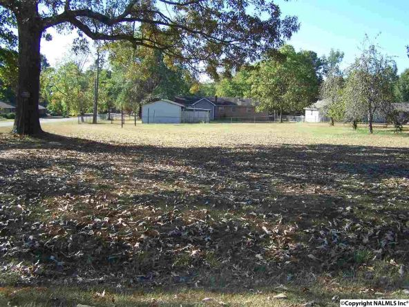183 County Rd. 462, Town Creek, AL 35672 Photo 30