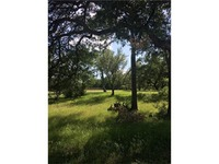 Home for sale: 101 Flint Ridge Trl, Georgetown, TX 78628