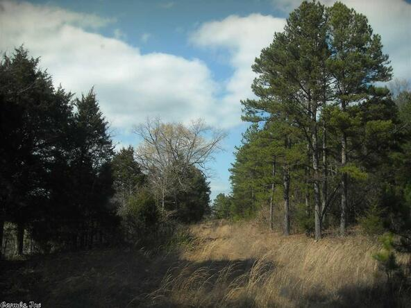 640 Old Gin Rd. W., Bee Branch, AR 72013 Photo 13