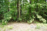 Home for sale: 4.6 Acre Tract Sam Jones Rd., Patrick, SC 29584
