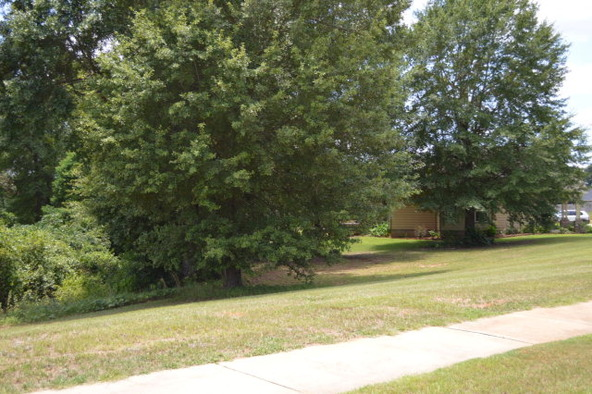 404 Turtleback Trail, Enterprise, AL 36330 Photo 52