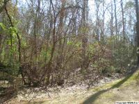 Home for sale: Lot 15 Lakeshore Dr., Langston, AL 35755