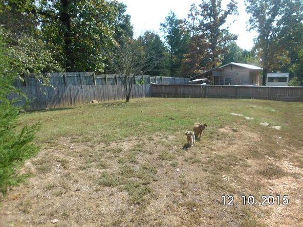 222 County Rd. 3226, Clarksville, AR 72830 Photo 13