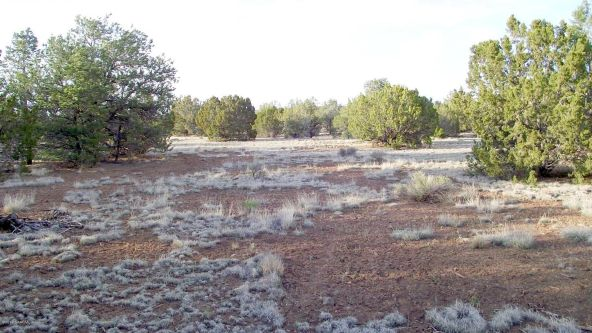 12498 N. Chino Rd., Williams, AZ 86046 Photo 21