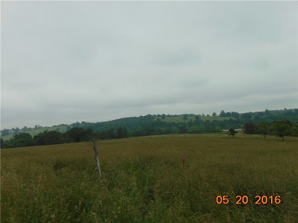 80 County Rd. 638, Green Forest, AR 72638 Photo 18