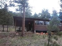 Home for sale: 1285 Platte Rd., Lake George, CO 80827