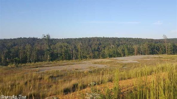 515 Ginger Rd., Scotland, AR 72141 Photo 3