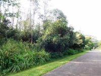 Home for sale: S. Hinalea St., Pahoa, HI 96778