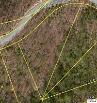 Home for sale: Lot 30 Coopers Hawk Way, Sevierville, TN 37862