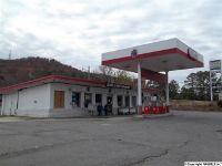 Home for sale: Hwy. 227, Guntersville, AL 35976
