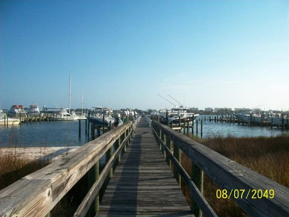 27282 Canal Rd., Orange Beach, AL 36561 Photo 11