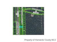 Home for sale: 0 Nicasio Jay Avenue, Weeki Wachee, FL 34613