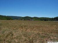 Home for sale: Hwy. 35, Scottsboro, AL 35769