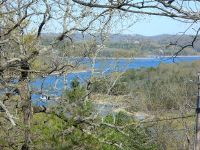 Home for sale: Lot 4 Richwood Ln., Branson West, MO 65737