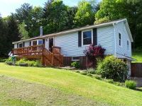 Home for sale: 491 Algerine St., Afton, NY 13730