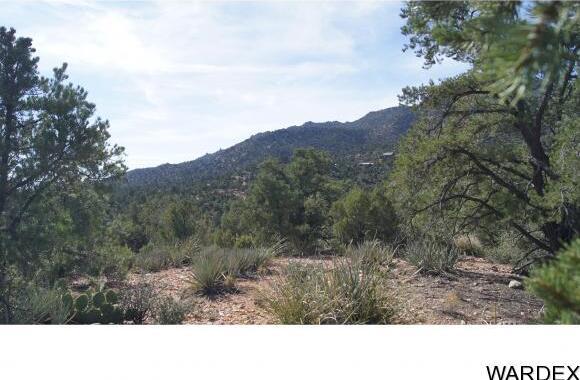 6731 N. Trap Springs Rd., Hackberry, AZ 86411 Photo 32