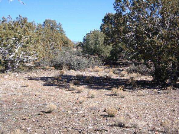 11620 N. Dovetail Rd. 25 Acres, Prescott, AZ 86305 Photo 6