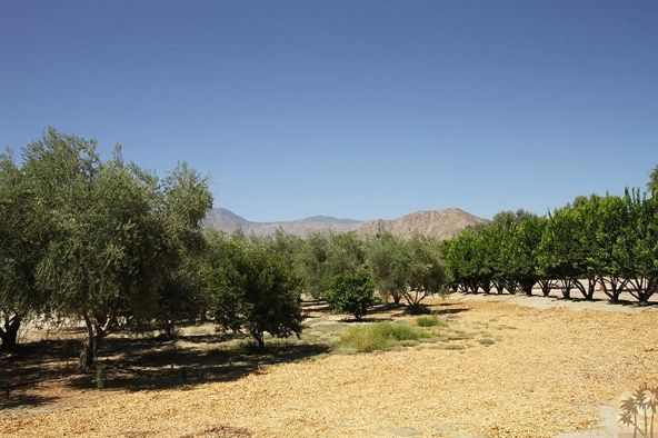 80865 Vista Bonita Trail, La Quinta, CA 92253 Photo 12