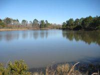 Home for sale: 0 Leggett Rd., Sycamore, GA 31790
