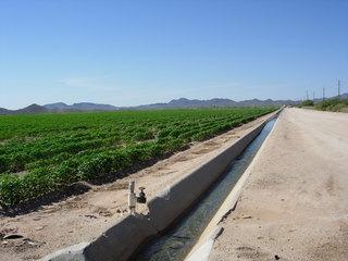68225 L-3 N.W. Hwy. 60 At M.P. 58 Hwy., Salome, AZ 85348 Photo 2