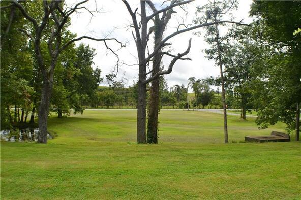 11944 Douglas Cemetery Rd., Gentry, AR 72734 Photo 68