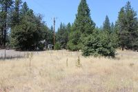 Home for sale: 38096 State Hwy. 299, Burney, CA 96013