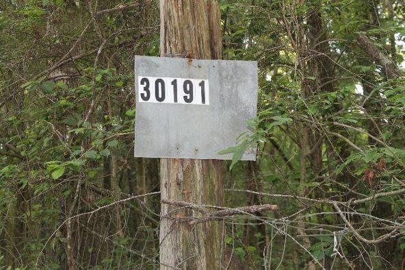 30191 Hollinger Creek Dr., Robertsdale, AL 36567 Photo 15
