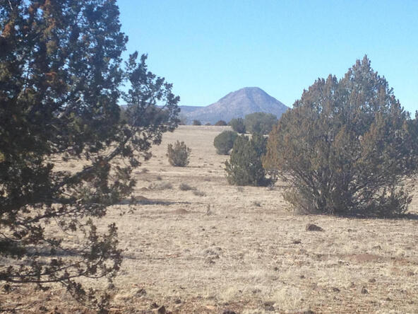 24 Off Of Antelope Run, Ash Fork, AZ 86320 Photo 5