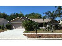 Home for sale: 2669 Bellhurst Dr., Dunedin, FL 34698