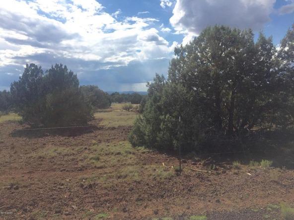 850 Cinder Pit Rd., Show Low, AZ 85901 Photo 49