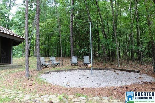 760 Black Acres Rd., Cropwell, AL 35054 Photo 85