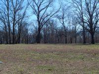 Home for sale: 0 Hickory Dr., Huntland, TN 37345