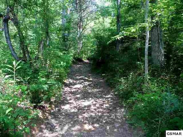 Par 4 Obes Branch Rd., Sevierville, TN 37876 Photo 5