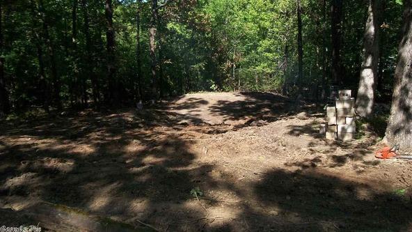 44 Pine Trail, Higden, AR 72067 Photo 1