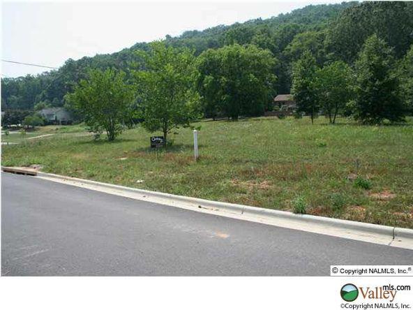 115 Lake Creek Dr., Guntersville, AL 35976 Photo 4