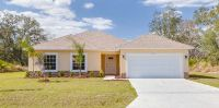 Home for sale: 157 Willow Drive, Kissimmee, FL 34759