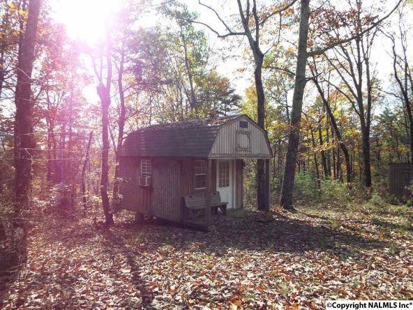 195 County Rd. 844, Mentone, AL 35984 Photo 4