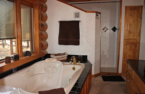 38721 State Route 373, Greer, AZ 85927 Photo 35