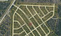 Home for sale: 0000 Shenandoah, Chipley, FL 32428