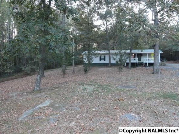 211 Dawson Rd., Fyffe, AL 35971 Photo 5