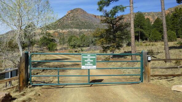 220 W. Zane Grey Cir., Christopher Creek, AZ 85541 Photo 37