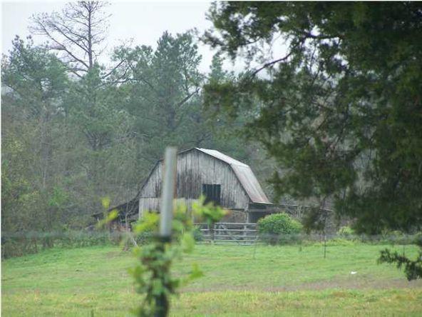 13075 Mt. Hester Rd., Cherokee, AL 35616 Photo 4
