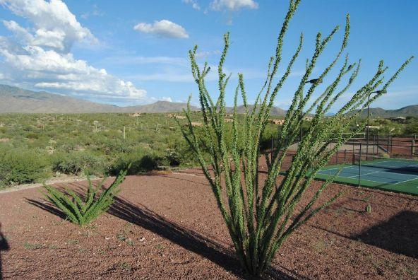 8356 S. Tumbling R Ranch, Vail, AZ 85641 Photo 3