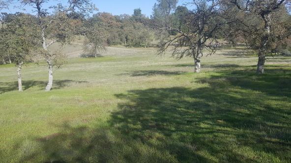 Basin Hollow, Millville, CA 96062 Photo 10