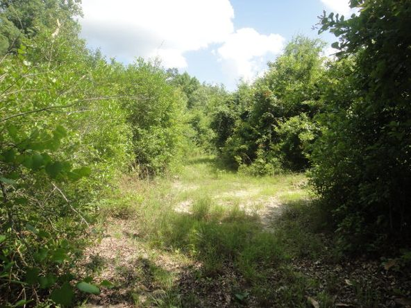 4.2 Ac Enoch Rd. (Cr 57), Andalusia, AL 36421 Photo 2