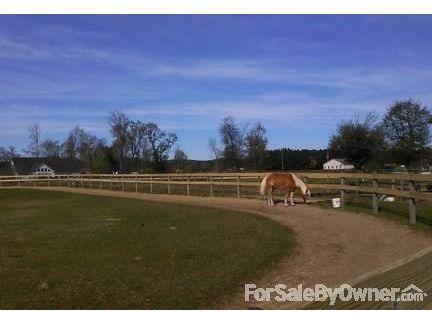 1426 Blair Farm Rd., Odenville, AL 35120 Photo 7