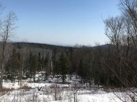 Home for sale: Lot #4 Woodsman Rd. Ext, Dover, VT 05356